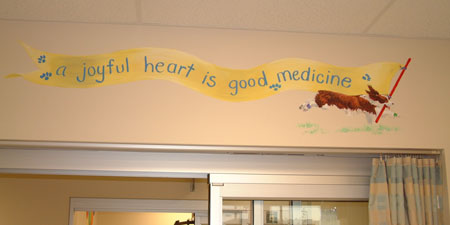 Ssm St Joseph Hospital Kirkwood Emergency Room